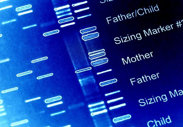 DNA_Genetics-620×480.jpg